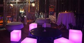 studio 54 temafest